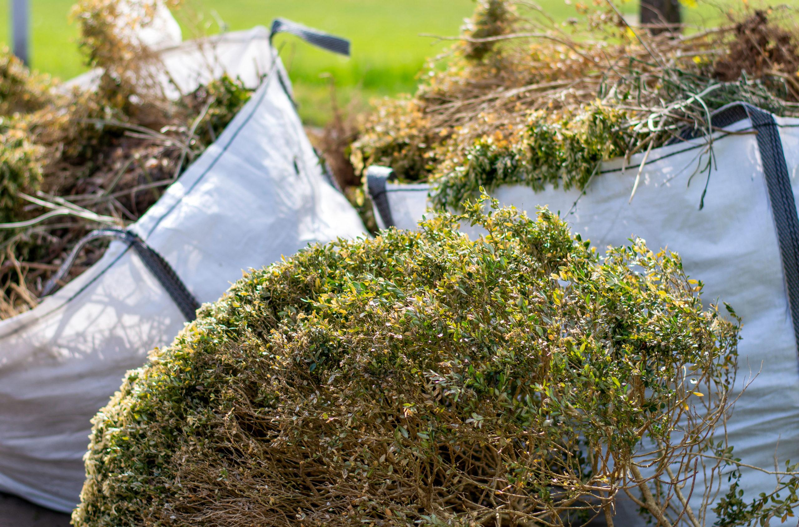 Gartenabfall prüfen